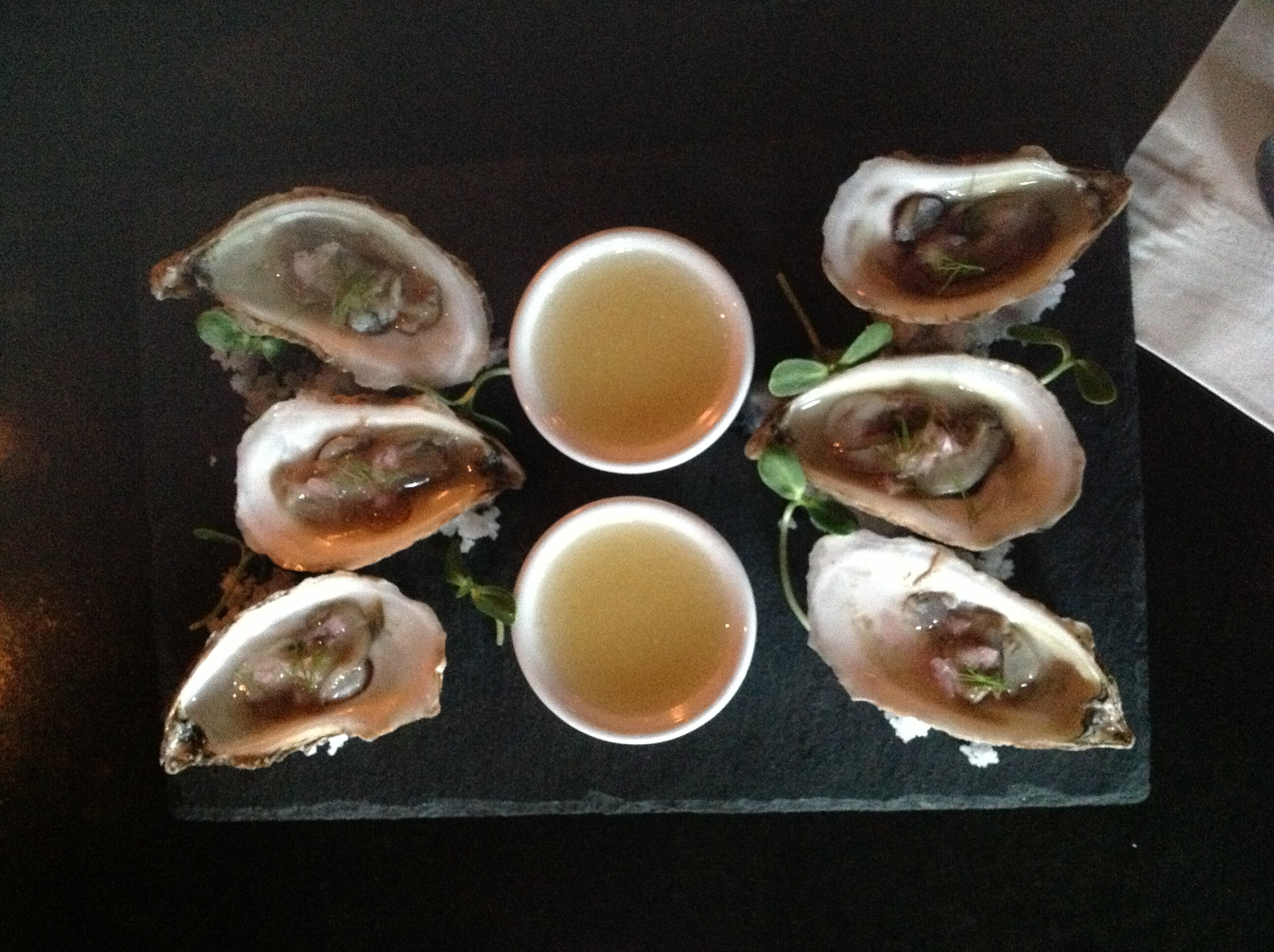 Oysters in New Brunswick