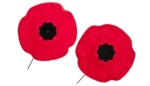 Remembrance Day poppies
